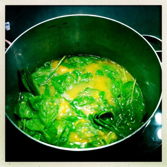 soppa, linser, potatis, spenat