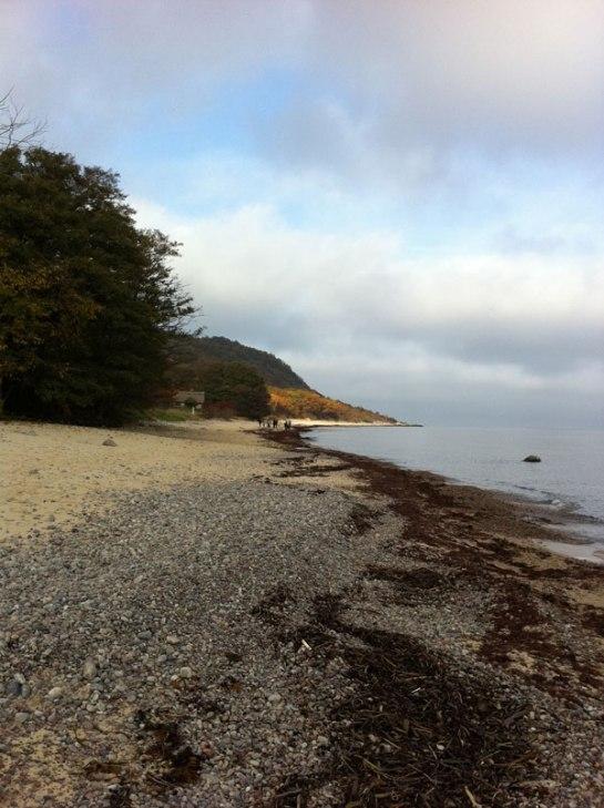 Stenshuvud stranden