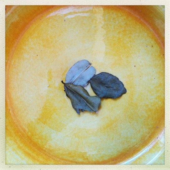 Torkade små limeblad