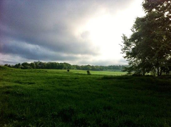 Den här bilden tar jag med mig från maj - från en av alla morgonjoggingturer - helt fantastiskt att springa i den energin!