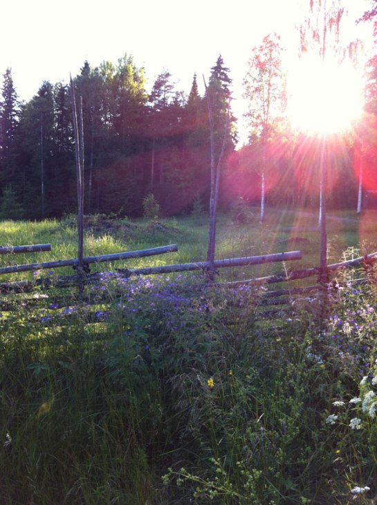 Soluppgång på Levagården.